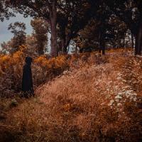 Ramihrdus / Luminous Veil - Two Solaced The Soils (Split) mp3