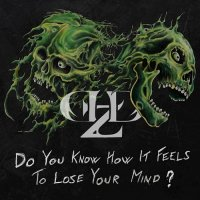Demolized-Do You Know How It Feels To Lose Your Mind?