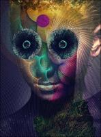 Dir En Grey-The Insulated World (Deluxe Limited Edition)