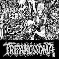 Tripanossoma-Nunca Subestime a Madrugada
