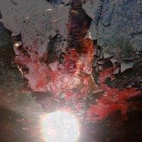 Bootblacks-Veins