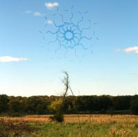 Oaks Of Bethel-The Spirit Molecule I