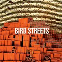 Bird Streets-Bird Streets