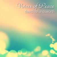 David Hollandsworth-Voices Of Peace