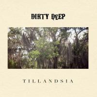 Dirty Deep-Tillandsia