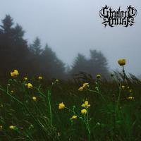 Twilight Fauna-Where Birds Sing My Name
