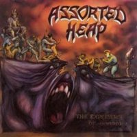 Assorted Heap-The Experience Of Horror