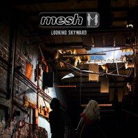 Mesh-Looking Skyward (2CD Limited Edition)